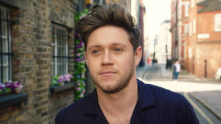 Niall Horan goes on a night out in his 'Nice To Meet Ya' music video