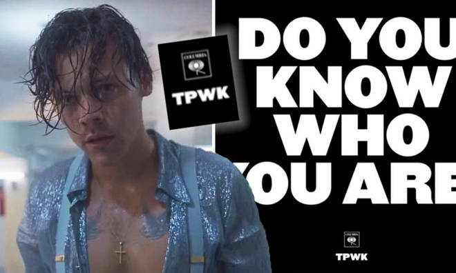Harry Styles's 'TPWK' meaning and clues ahead of second album