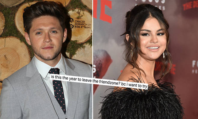 Niall Horan has admitted that he's 'good friends' with Selena Gomez.