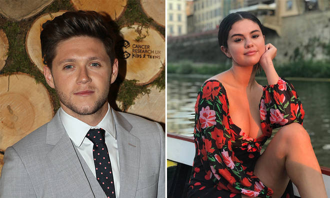 Niall Horan and Selena Gomez's friendship has blossomed