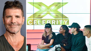 X Factor: Celebrity's results show will be replaced by Catchphrase