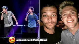 Niall Horan and Louis Tomlinson gave us the reunion we didn't know we needed