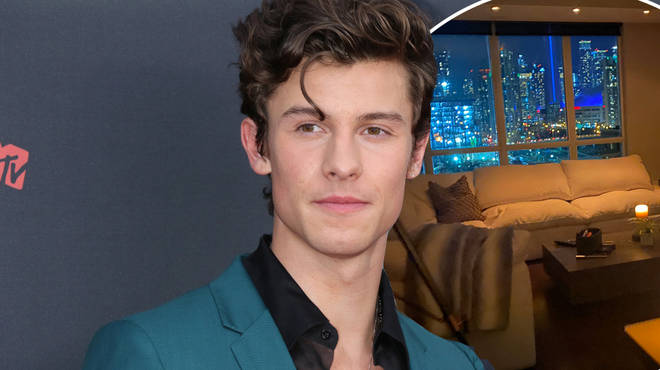 Shawn Mendes shared a picture of his cosy apartment