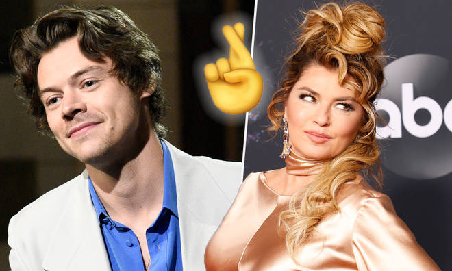 Harry Styles & Shania Twain in talks to make a song together